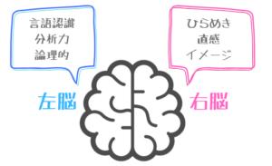 右脳と左脳の役割